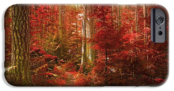 Tara Turner iPhone Cases - The Mystic Forest iPhone Case by Tara Turner