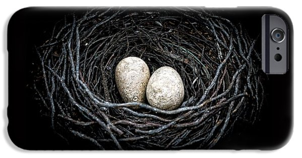 Nest iPhone Cases - The Nest iPhone Case by Edward Fielding