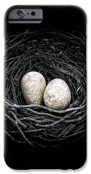 The Nest iPhone Case by Edward Fielding