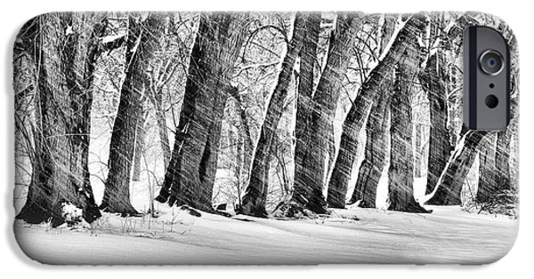 Bayside iPhone Cases - The Noreaster BW iPhone Case by JC Findley
