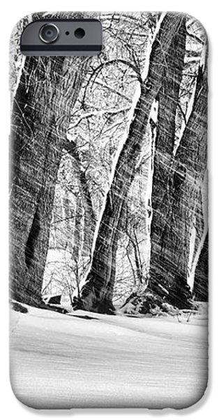 The Noreaster BW iPhone Case by JC Findley