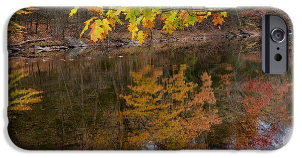 Litchfield County Landscape iPhone Cases - The Oaks iPhone Case by Bill  Wakeley