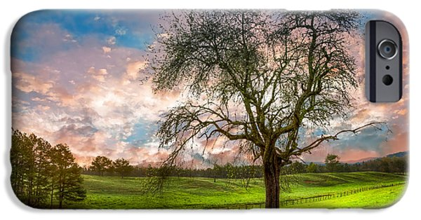 Tn Barn iPhone Cases - The Old Apple Tree at Dawn iPhone Case by Debra and Dave Vanderlaan