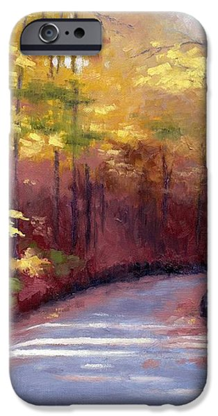 The Old Roadway in Autumn II iPhone Case by Janet King