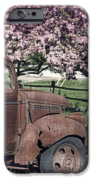 Old Truck iPhone Cases - The Old Truck and the Crab Apple iPhone Case by Edward Fielding