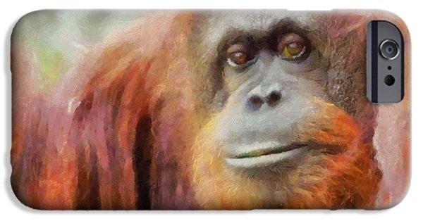 Orangutan iPhone Cases - The Orangutan iPhone Case by Dan Sproul