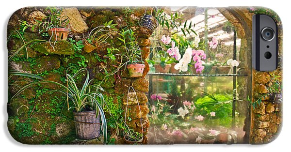 Ledge iPhone Cases - The orchid window iPhone Case by Eti Reid