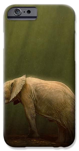Elephants iPhone Cases - The Orphin iPhone Case by Aaron Blaise