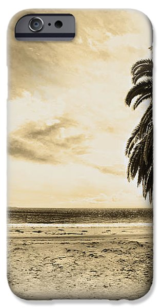 The Palm Swayed as the Storm on the Ocean Blew In iPhone Case by Artist and Photographer Laura Wrede
