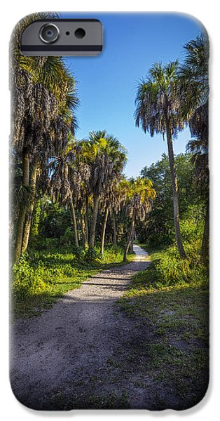 Palmettos iPhone Cases - The Palm Trail iPhone Case by Marvin Spates