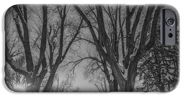 Snow iPhone Cases - The Park in Black and White iPhone Case by Gloria Pasko