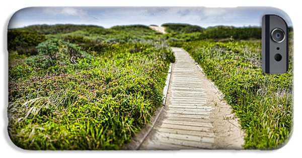 Ano Nuevo iPhone Cases - The Path iPhone Case by John Early