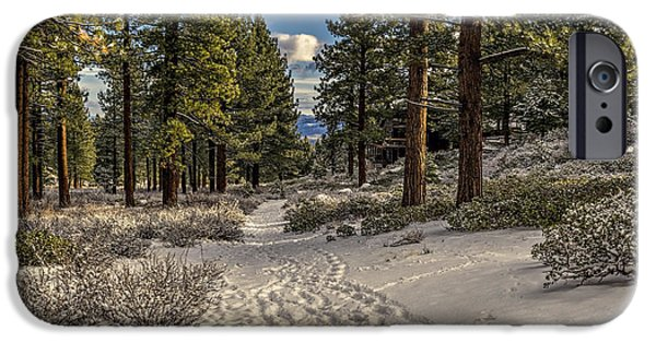 Winter Scene iPhone Cases - Path iPhone Case by Maria Coulson
