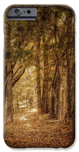 The Path Not Taken iPhone Case by Scott Norris