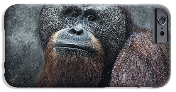 Patriarch iPhone Cases - The Patriarch iPhone Case by Joachim G Pinkawa