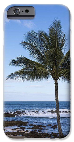 The Perfect Palm Tree - Sunset Beach Oahu Hawaii iPhone Case by Brian Harig