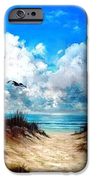 Seagull Pastels iPhone Cases - The Perfect Path iPhone Case by Vincent Mancuso