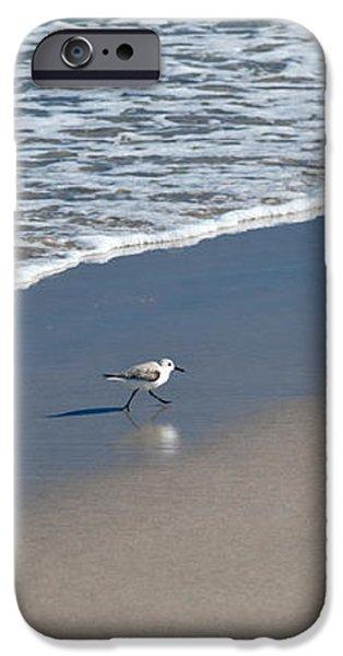 The Pied Sandpiper iPhone Case by Michelle Wiarda