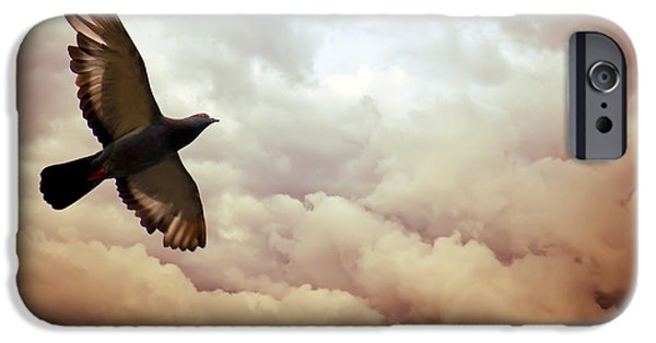 Flight iPhone Cases - The Pigeon iPhone Case by Bob Orsillo