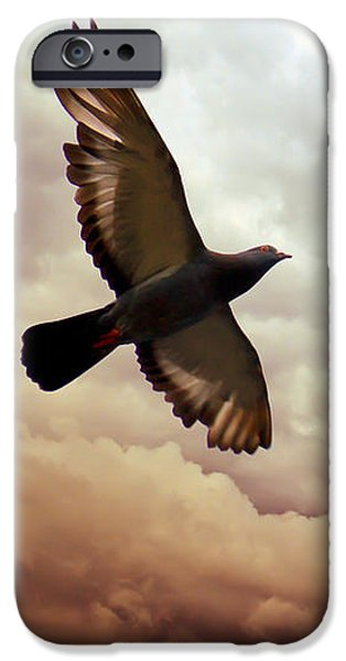 Freedom iPhone Cases - The Pigeon iPhone Case by Bob Orsillo