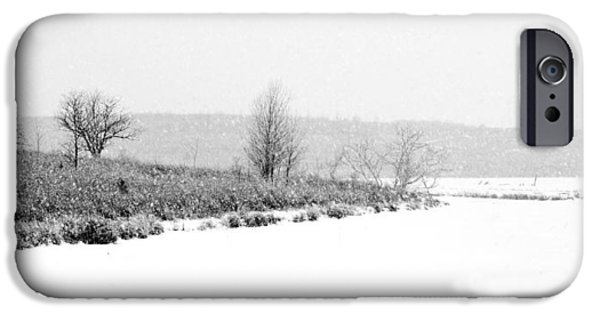 Park Scene iPhone Cases - The Point in Winter iPhone Case by Nikolyn McDonald