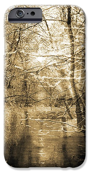 The pond iPhone Case by Yanni Theodorou