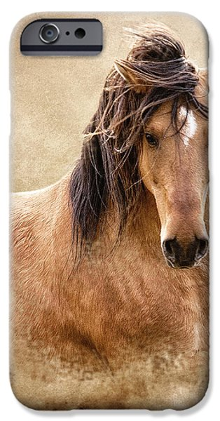 Wild Horses iPhone Cases - The Proud iPhone Case by Ron  McGinnis