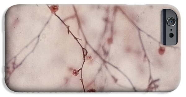 Flora iPhone Cases - The Purr Of Autumn iPhone Case by Priska Wettstein
