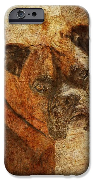 Boxer Digital iPhone Cases - The Question iPhone Case by Judy Wood