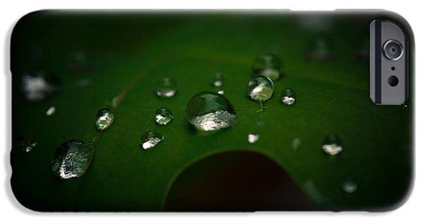 Rain iPhone Cases - The Rain Fell iPhone Case by Shane Holsclaw