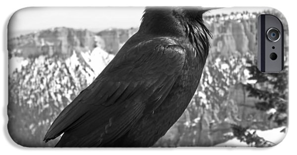 Raven iPhone Cases - The Raven - Black and White iPhone Case by Rona Black