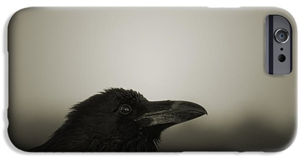 Mythical Creatures iPhone Cases - The Raven iPhone Case by David Gordon