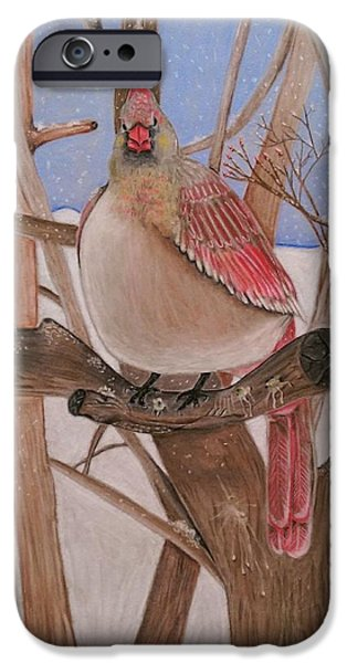 Winter Storm Pastels iPhone Cases - The real angry bird iPhone Case by Denisse Del Mar Guevara