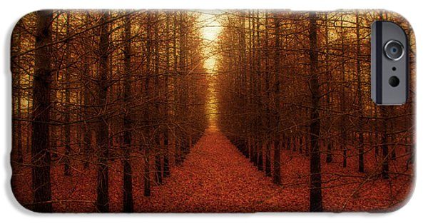 Outdoors Photographs iPhone Cases - The Red Forest iPhone Case by Amy Tyler
