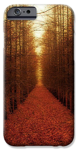 The Red Forest iPhone Case by Amy Tyler