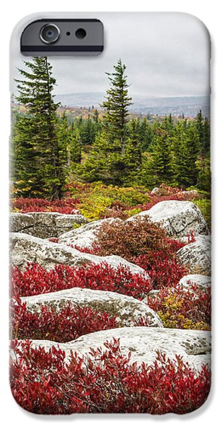 Sod iPhone Cases - The Reds and Greens of Dolly Sods WIlderness in West Virginia iPhone Case by Bill Swindaman