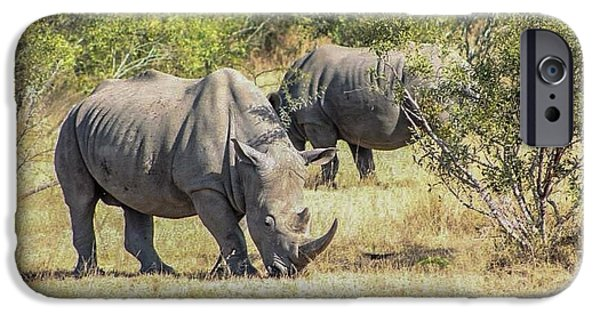 Wild Animals Pyrography iPhone Cases - The Rhinos iPhone Case by Dillon Travis