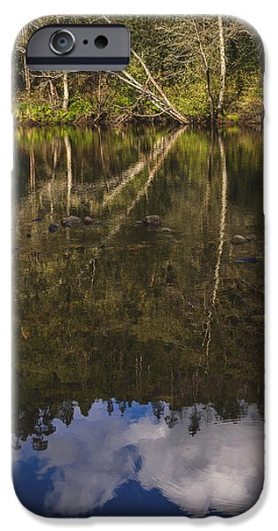 Fall Bushes iPhone Cases - The River VII iPhone Case by Marco Oliveira