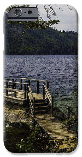 Fallen Leaf On Water iPhone Cases - The Rock Dock iPhone Case by Mitch Shindelbower