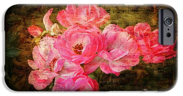 Swans... iPhone Cases - The Romance of Roses iPhone Case by Lianne Schneider