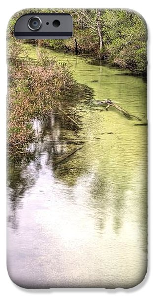 The Rope Swing iPhone Case by JC Findley