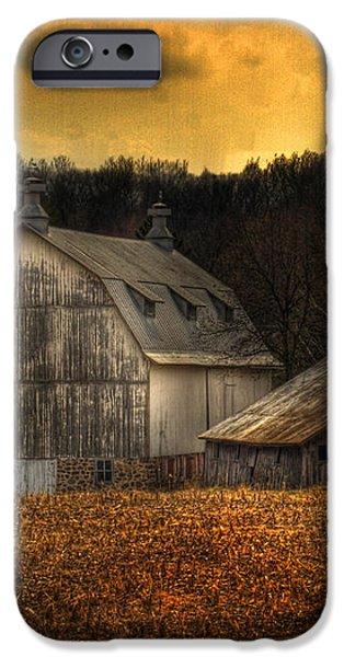 The Rose Farm iPhone Case by Thomas Young