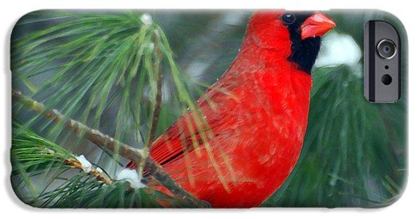 Cardinal iPhone Cases - The Santa Bird iPhone Case by Kerri Farley