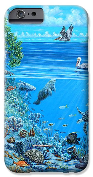 The Sea is Calling iPhone Case by Danielle  Perry