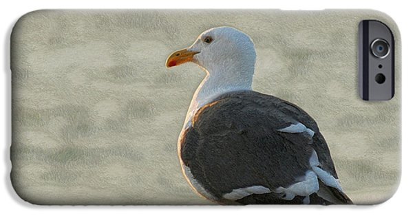 Seagull iPhone Cases - The Seagull iPhone Case by Ernie Echols