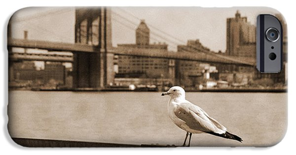 Hudson River iPhone Cases - The seagull of the Brooklyn Bridge vintage look iPhone Case by RicardMN Photography
