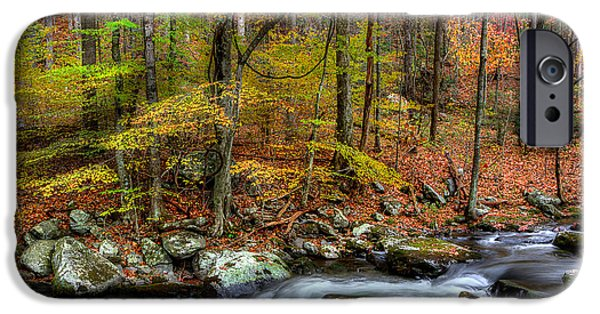 Fall Scenes iPhone Cases - The Season Flows Along iPhone Case by Michael Eingle
