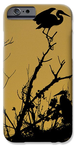 Big Blue Marble iPhone Cases - The Sentry iPhone Case by Kelly Gibson