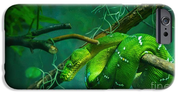 Serpent iPhone Cases - The Serpent iPhone Case by Rich Priest