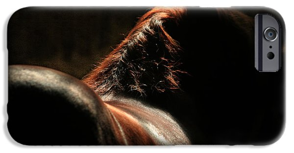 Horse Digital Art iPhone Cases - The Silhouette iPhone Case by Angel  Tarantella